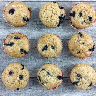 blueberry-coconut-muffins-2
